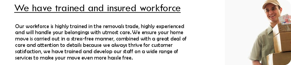 We have trained and insured workforce